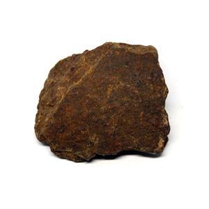 MOROCCAN METEORITE Chondrite Genuine 74.8 grams w/color card 15551 7o