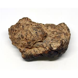 MOROCCAN METEORITE Chondrite Genuine 168.8 grams w/color card 15560 9o