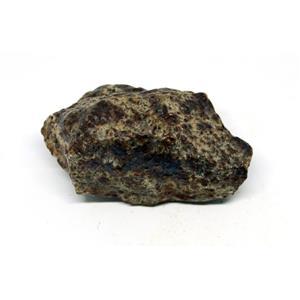 MOROCCAN METEORITE Chondrite Genuine 118.7 grams w/color card 15564 8o