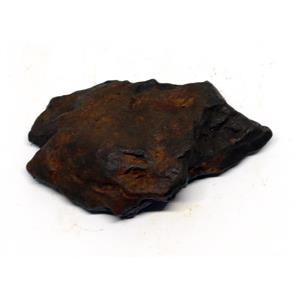 NANTAN IRON NICKEL METEORITE -Genuine-33.8 gram + card & COA# 15614 4o
