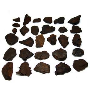 Nantan Iron Meteorite Genuine Pieces Dealer Lot 503 grams (18.2 oz) 15637 25o